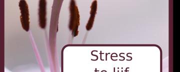 Stress te lijf